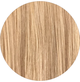 "20"" CLIP IN HAIR IN CARAMEL BLONDE #27"